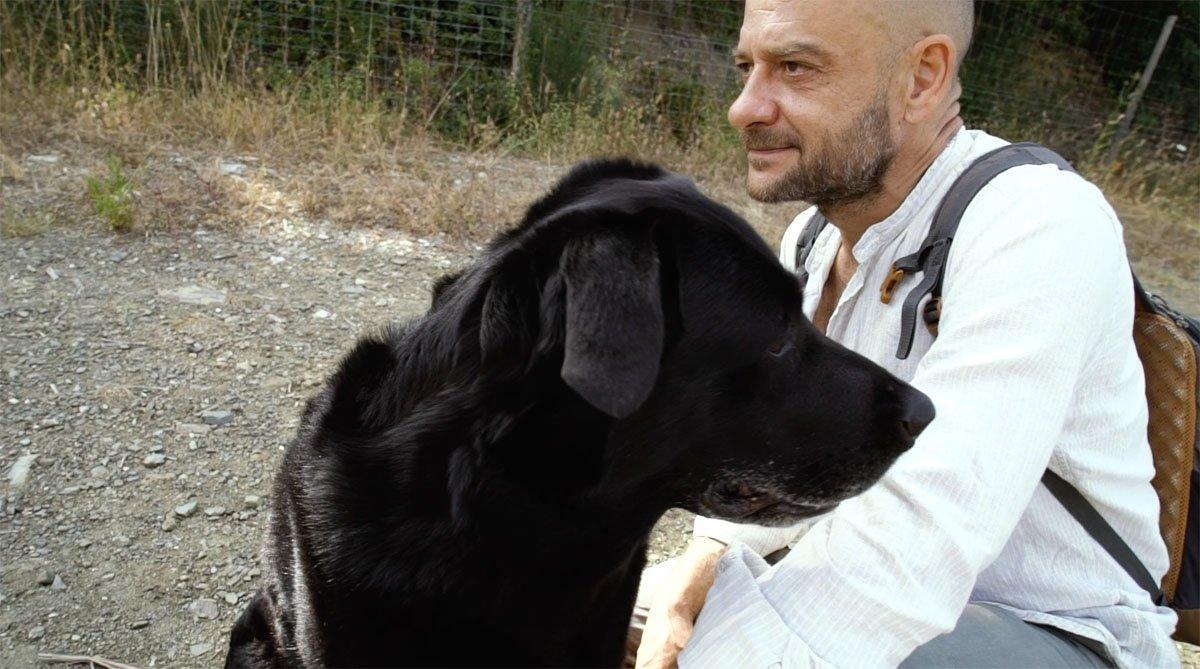 Educatore Cinofilo a Firenze